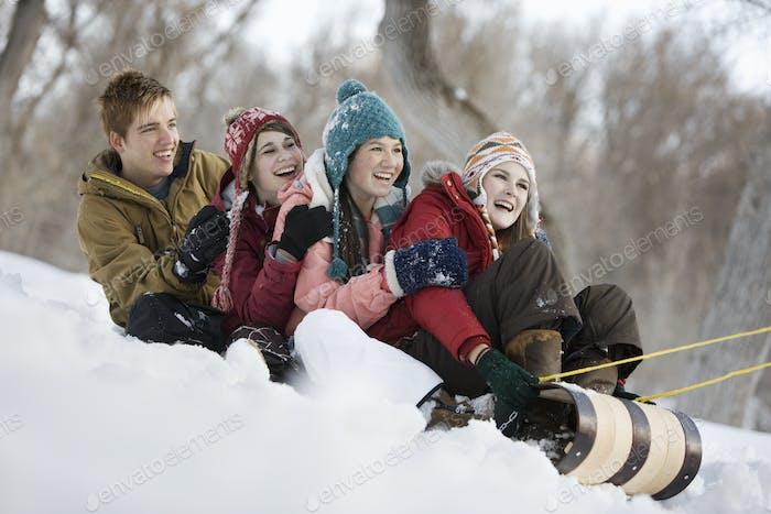 Vier junge Menschen auf einem großen Schlitten gleiten über den Schnee, bergab.