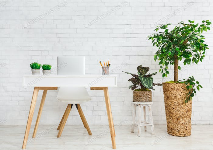 Workplace in scandinavian style. Table and various plants