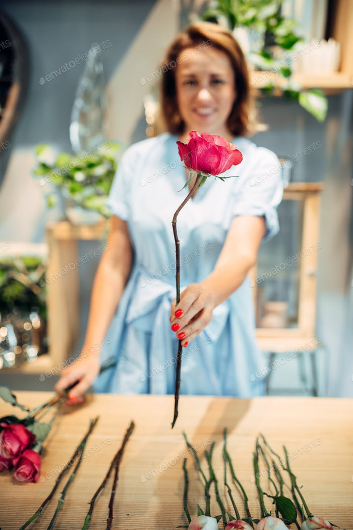 Florist sorts roses on the table in flower shop