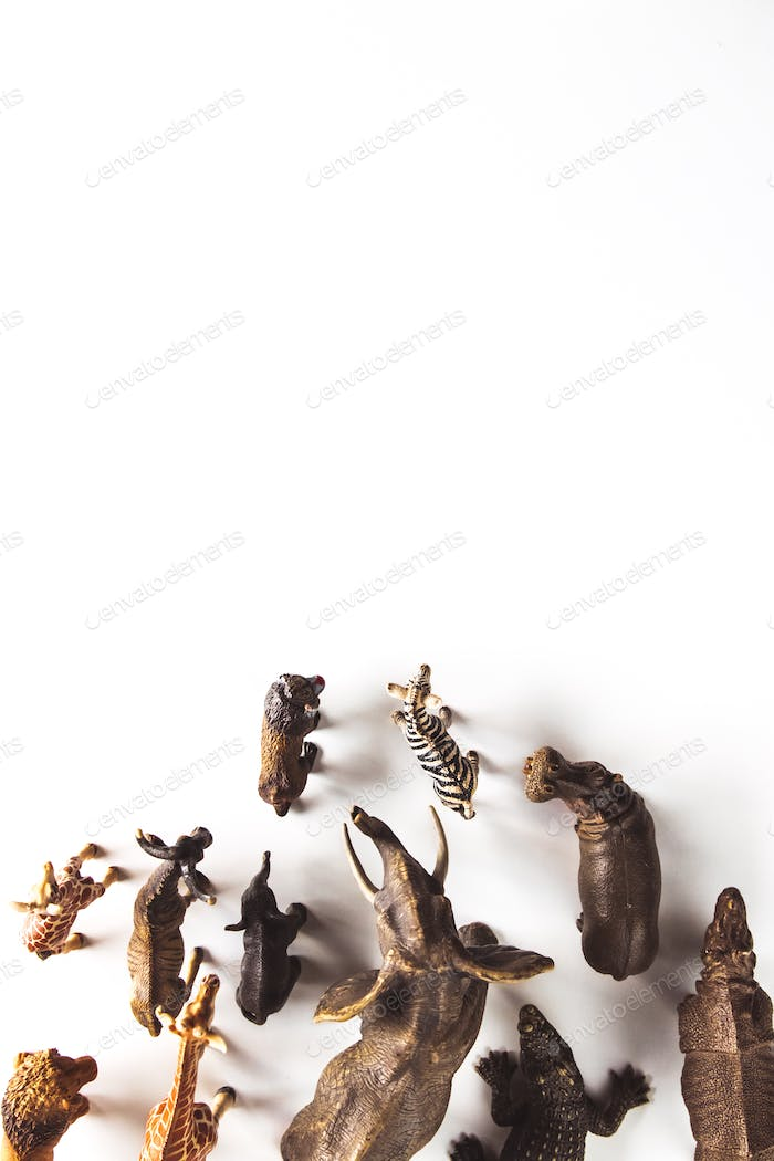 Group of animals toys isolated over white background. animals toys
