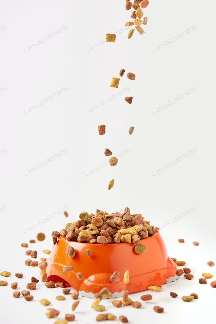 dog food granules falling into plastic bowl with pet food on white