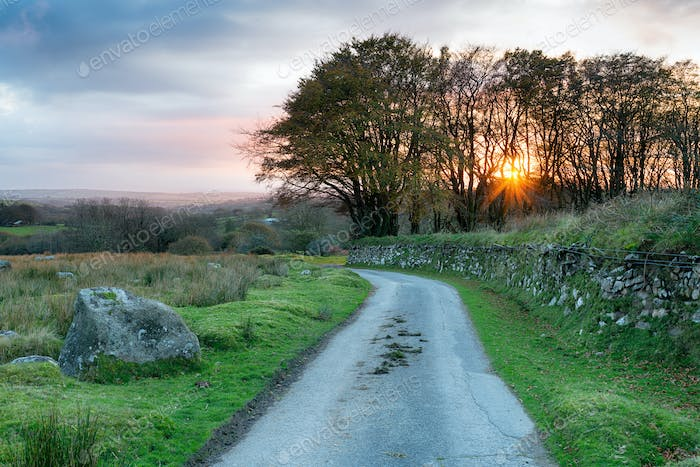 Country Lane in Cornwall