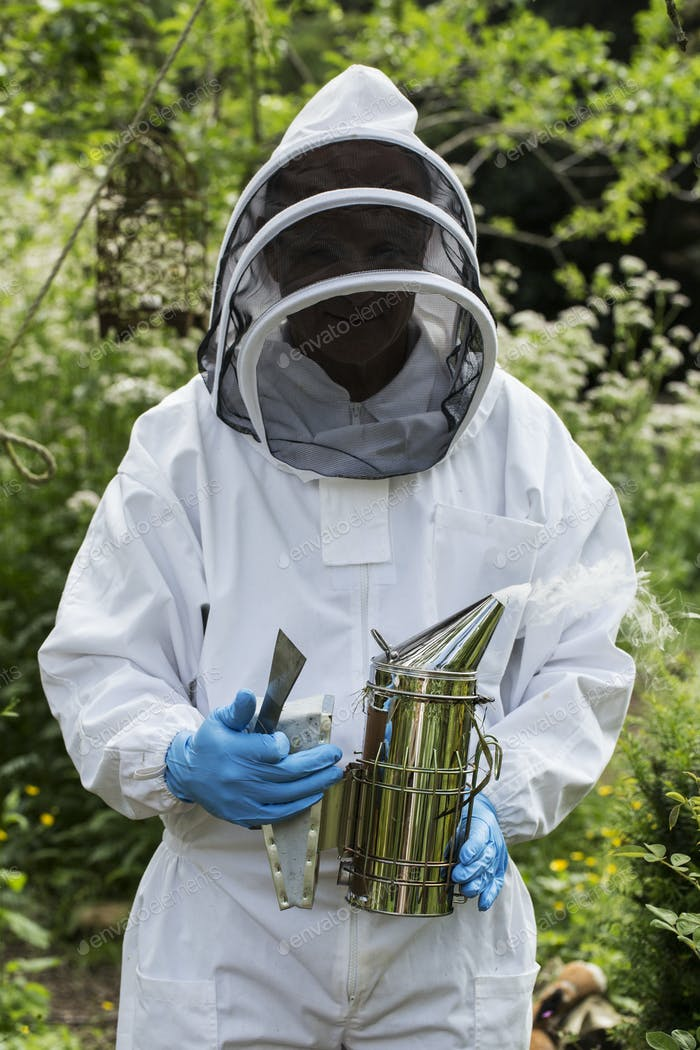 Beekeper wearing protective suit at work, holding metal smoker to calm bees.