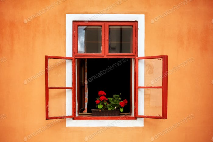 Opened old red window with flowers in orange wall