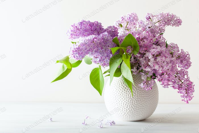 beautiful lilac flowers in vase on white background