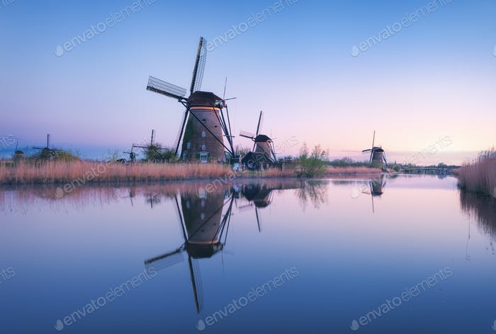 Windmills and clear blue sky at sunrise in Kinderdijk, Netherlan
