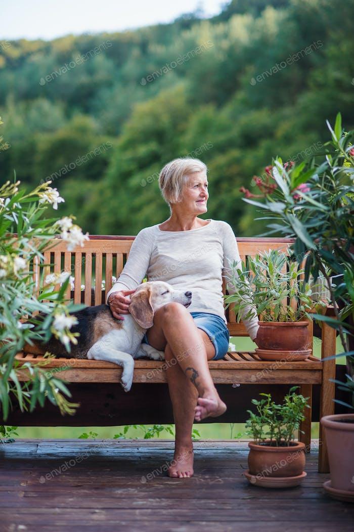 Eine Seniorin mit einem Hund sitzt im Freien auf einer Terrasse im Sommer.