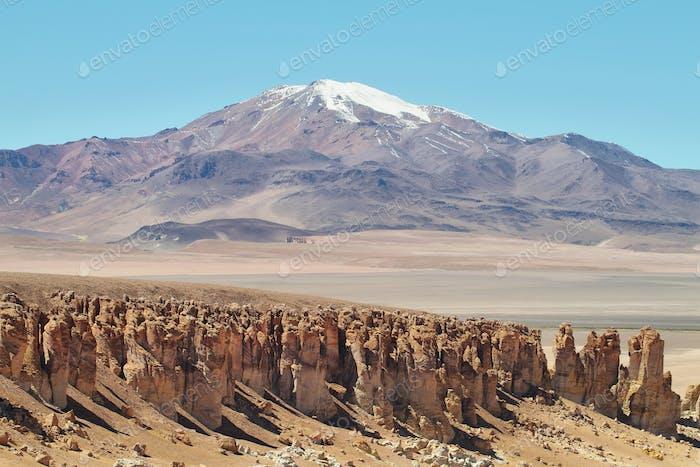 On the way to Salar de Tara, Chile