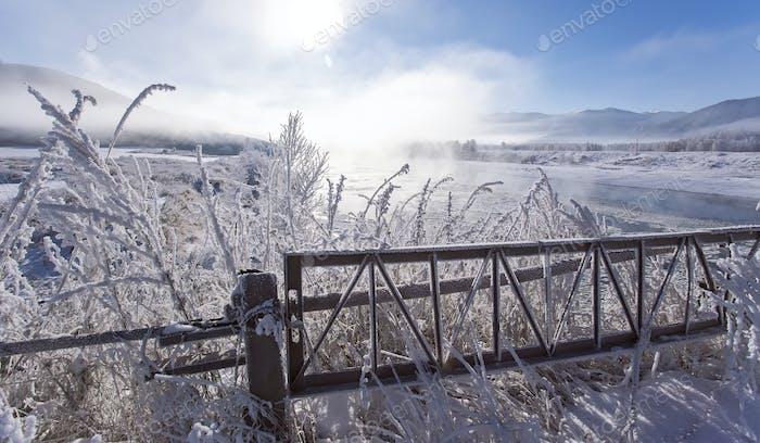 Winterlandschaft - frostige Winterpflanzen auf dem Hintergrund von Sonnenuntergang und Winter Fluss kalt mis