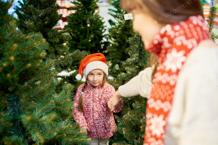 Little Girl Choosing Christmas Tree