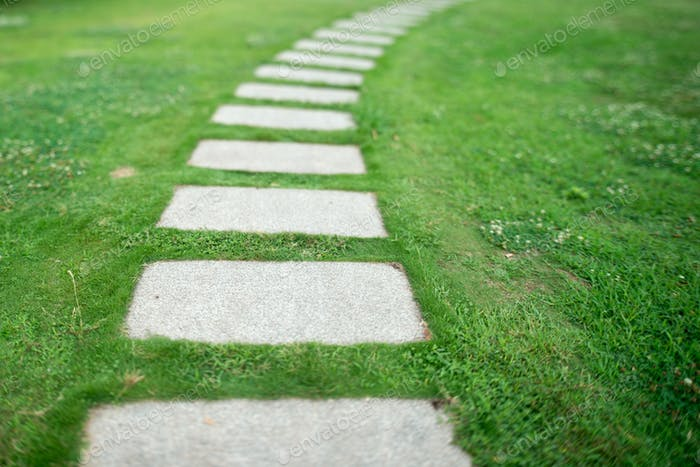 Thumbnail for Park lane