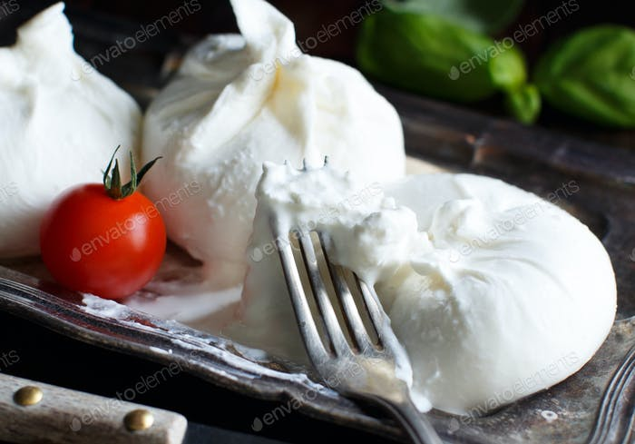 Italian cheese burrata