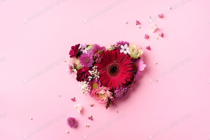 Herzform aus Frühlingsblumen auf rosa, kräftigen Pastellhintergrund. Draufsicht, flach gelegt. Sommer