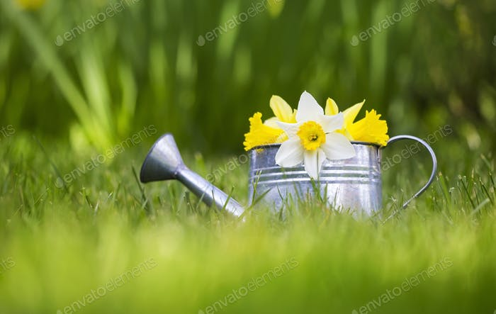 Easter and gardening concept
