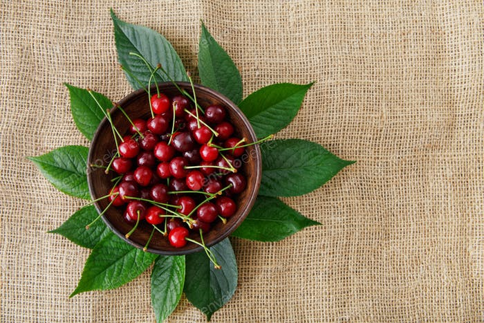Sweet fresh cherries with green leaves on sack cloth