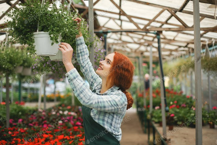 Nice smiling florist in apron working with flowers. Young lady s