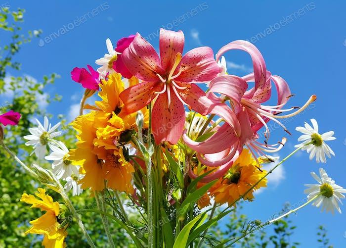 Schöne helle Blumenstrauß von bunten Blumen