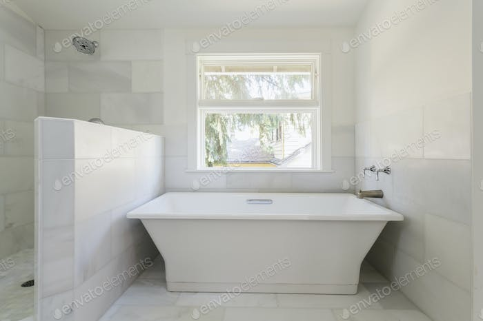 54531,Bathtub and shower in modern bathroom