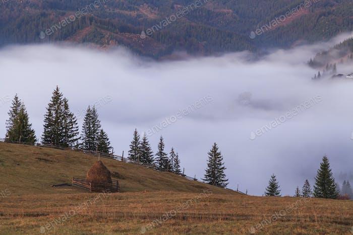 View of misty fog mountains , Carpathians, Ukraine