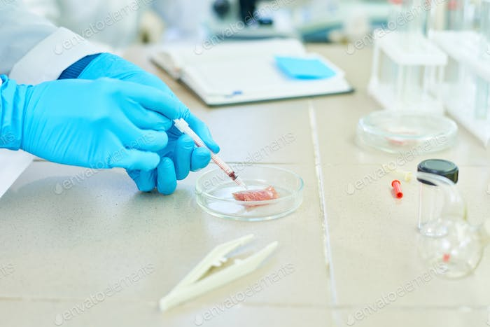 Laboratory Creation of In Vitro Meat