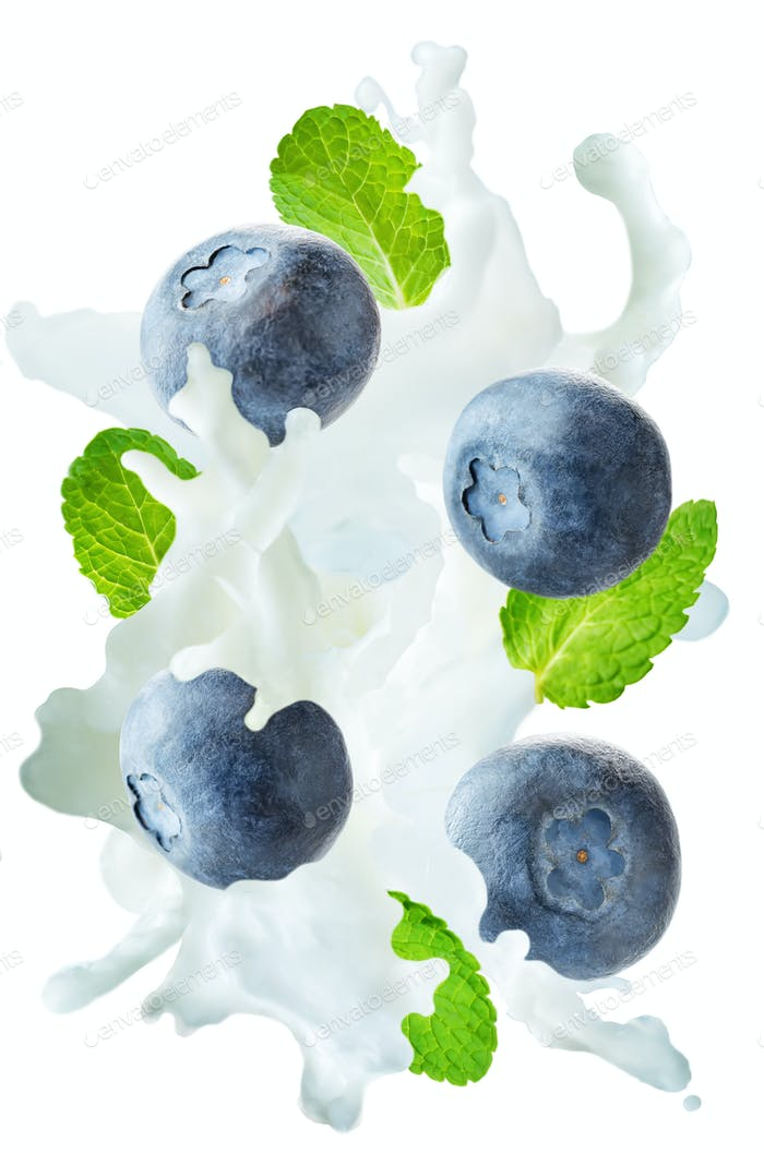 Flying blueberry with mint leaves and a spray of milk
