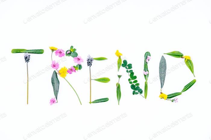 Composición minimalista con palabra «TENDENCIA» hecha de flores silvestres
