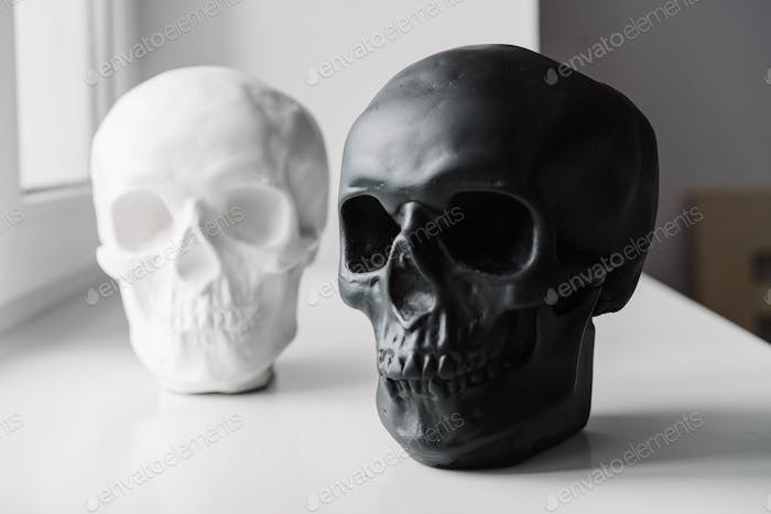 White and black skulls stand on the windowsill