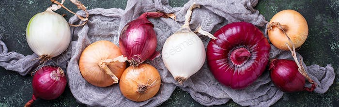 Various type of onions on green background.
