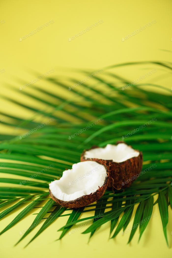 Coconut over tropical green palm leaves on yellow background. Copy space. Pop art design, creative