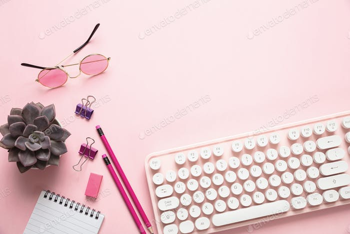 Computer keyboard and succulent plant against pink background