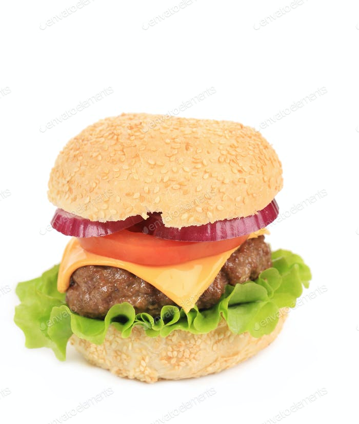 Tasty cheeseburger.