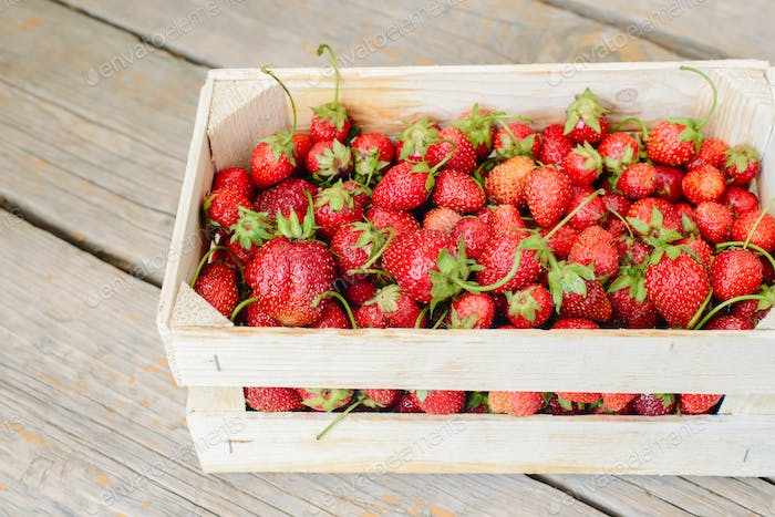Strawberry in a box