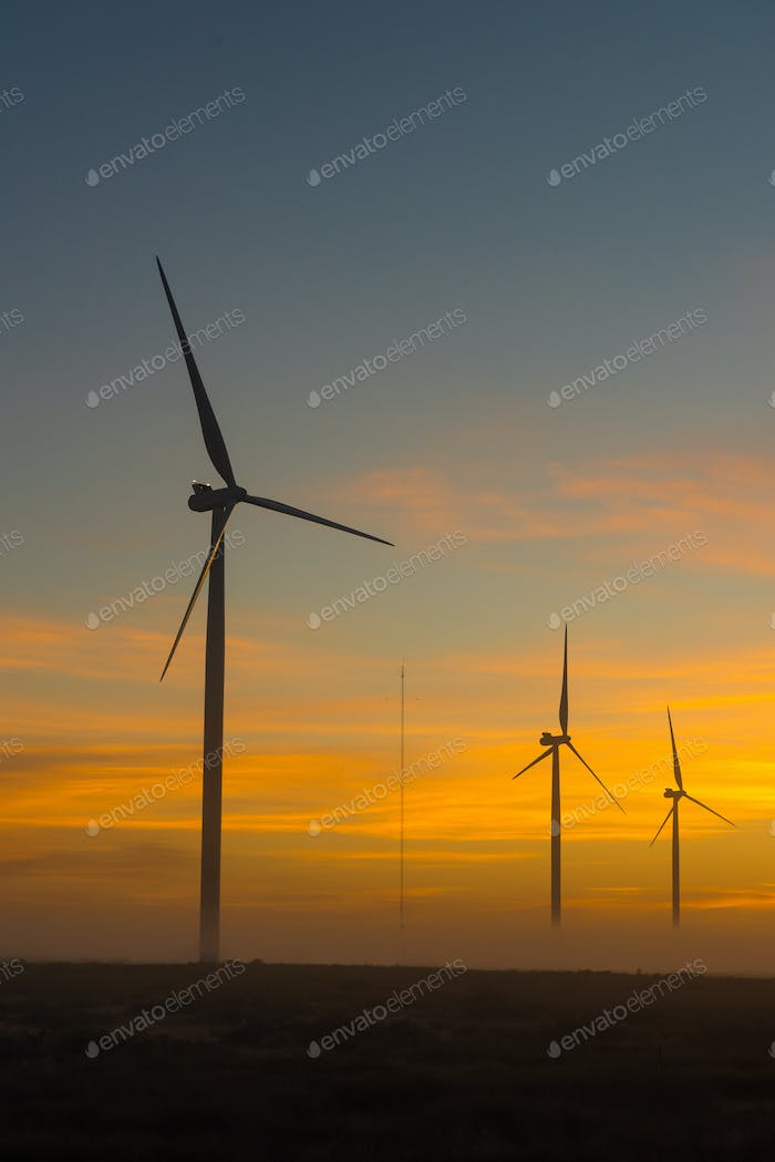 Silhouettes of wind turbines at dawn near Hopefield