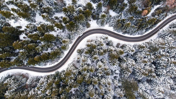 Winding Lane Road in Winter Woodland. Top Down Aerial View