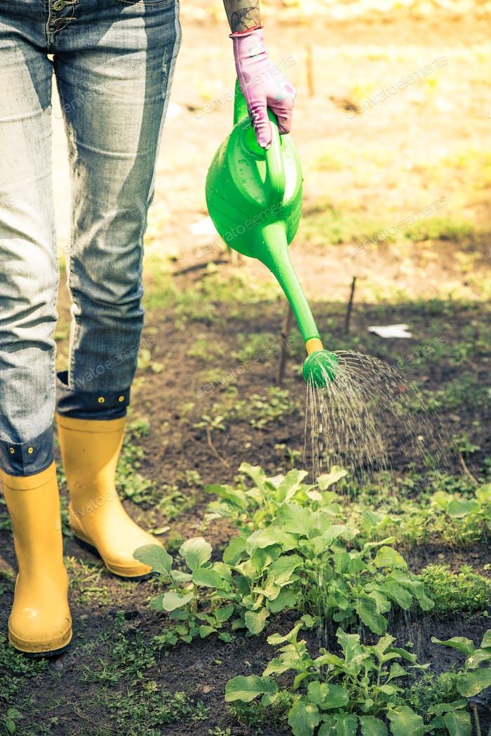 Tattooed woman watring plants in garden wearing wellies
