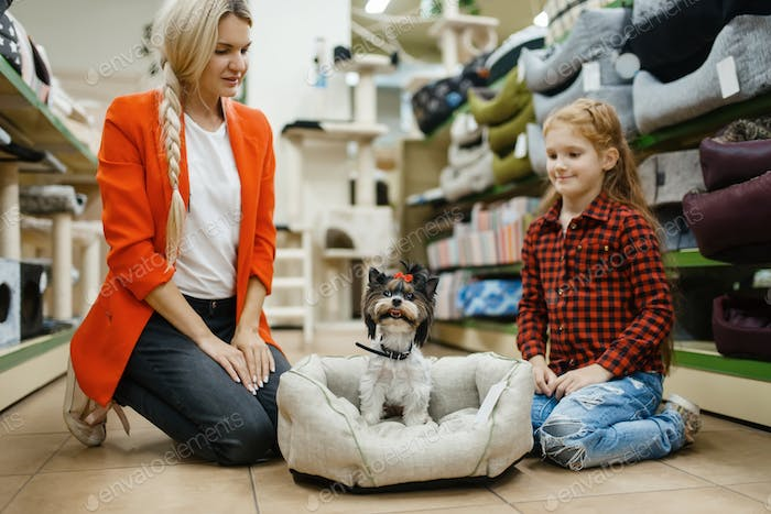 Mother with daughter choosing dog bed, pet store