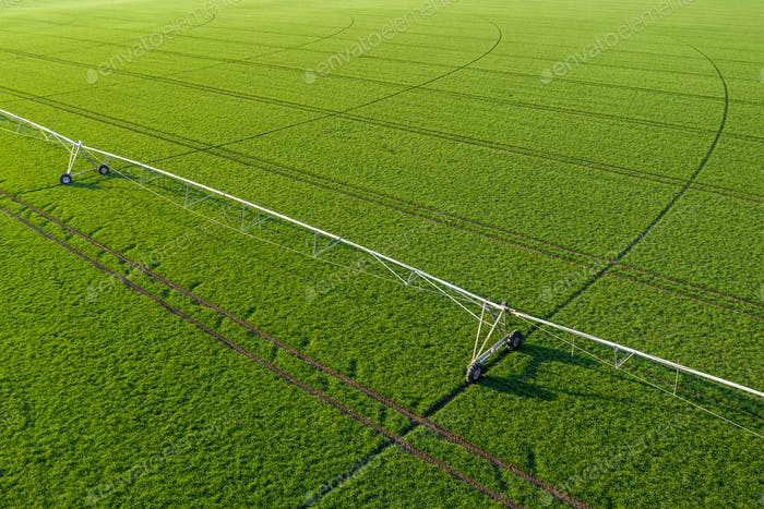 Aerial View of Center Pivot Irrigation Sprinkler in Wheat Field