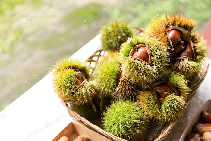 Chestnut with skin