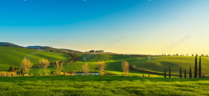 Maremma countryside at sunset. Bibbona, Tuscany, Italy.