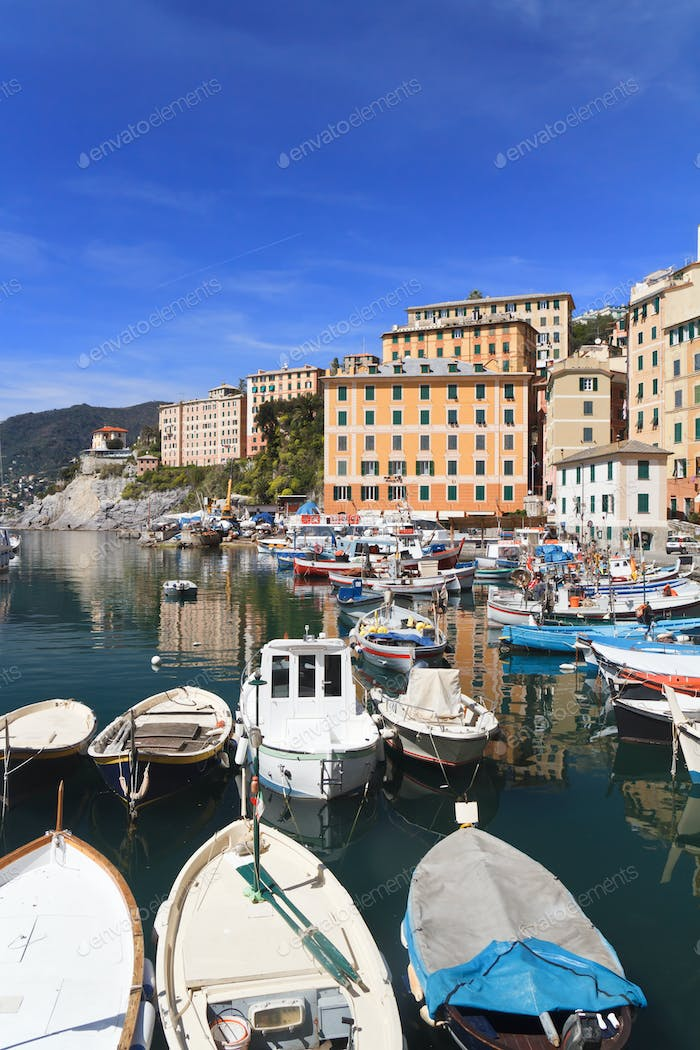 harbor in Camogli, Italy