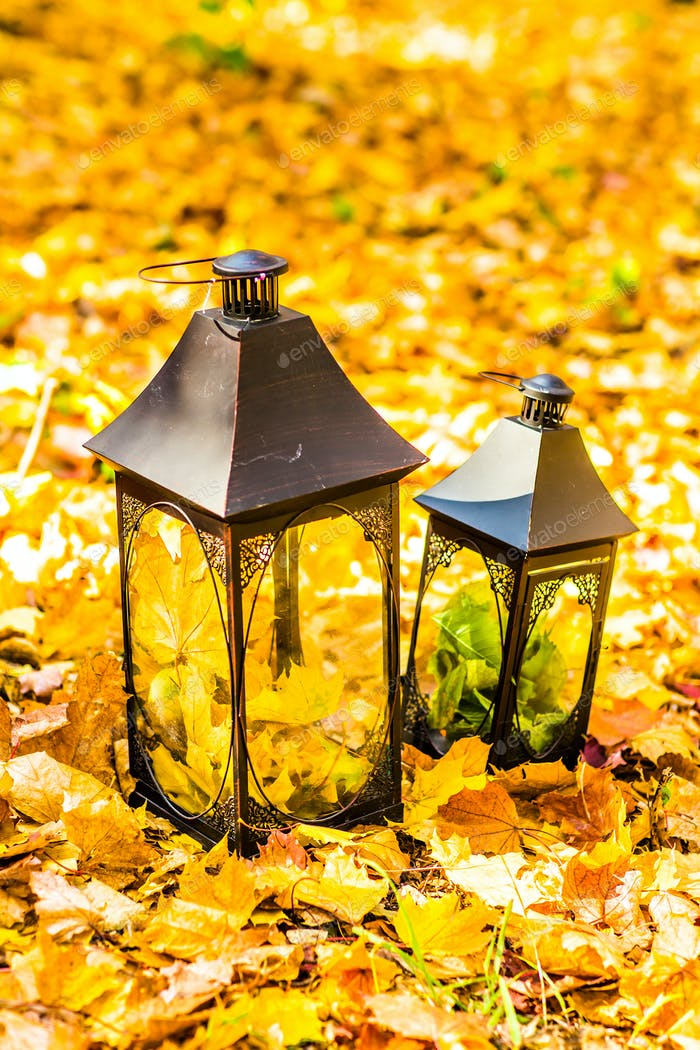 Lantern in an autumn leaves