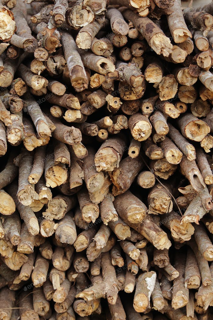 Firewood logs in Asia