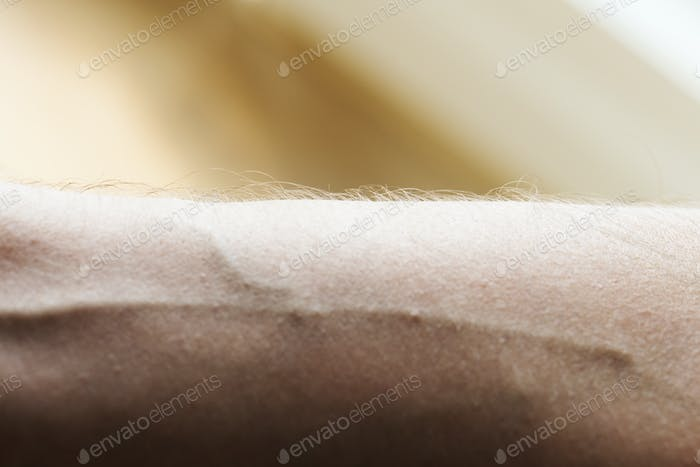 Closeup of a human arm and vein