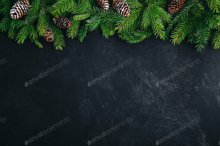 Christmas festive background with christmas tree branches and fir cones