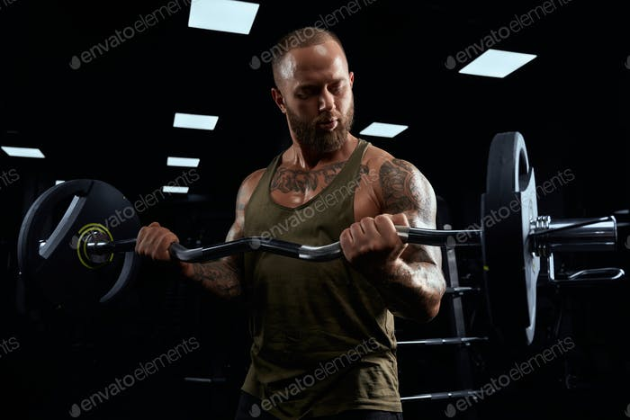 Muscular sportsman building biceps with barbell