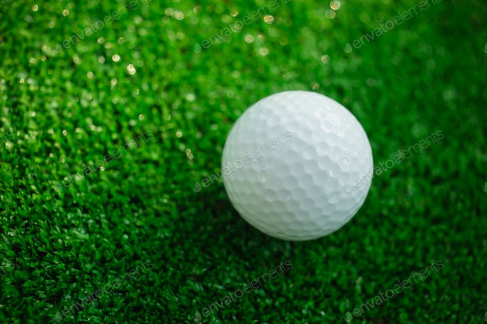 Golf ball with putter on green course. Selective focus