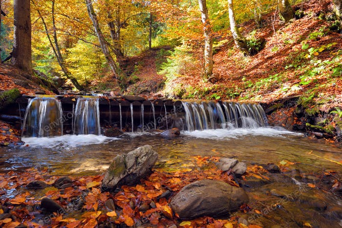 Beautiful landscape with a waterfall in the autumn forest. Autumn sunny day