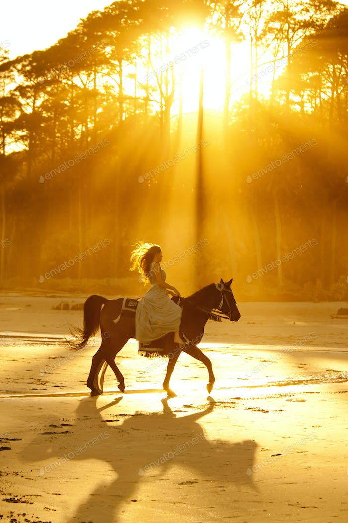 backlit woman on horseback riding on beach