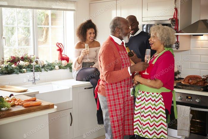 Multi-ethnic adult family celebrating on Christmas Day