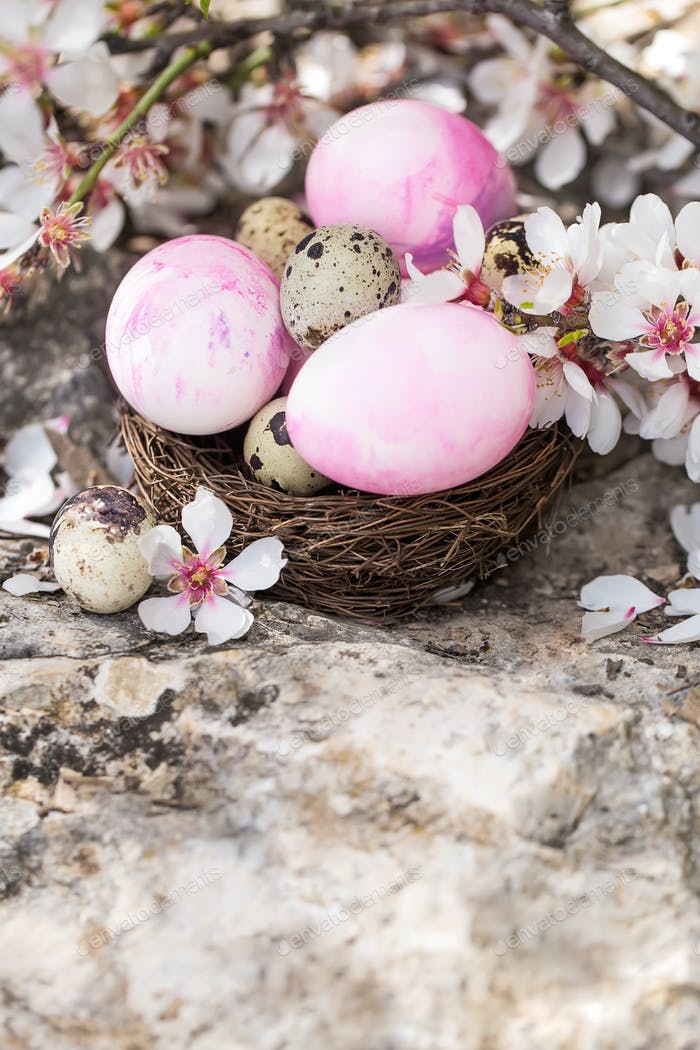 Easter eggs and blossom background